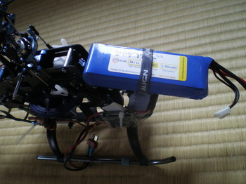 IMGP3272.jpg